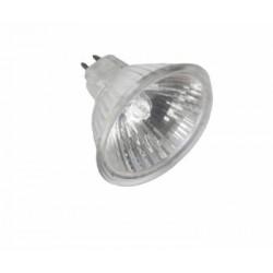 Bombilla dicroica 8v 50w